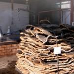 Preparación de bandejas para cocción
